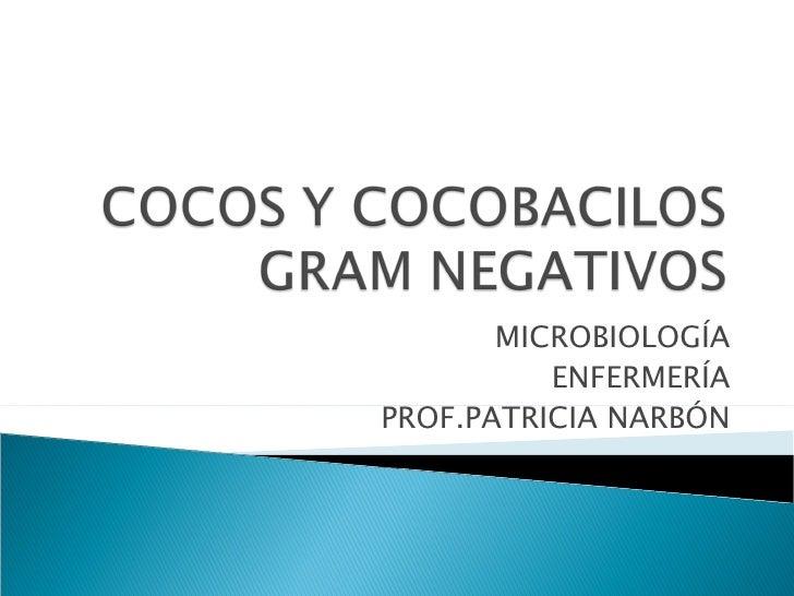 MICROBIOLOGÍA          ENFERMERÍAPROF.PATRICIA NARBÓN