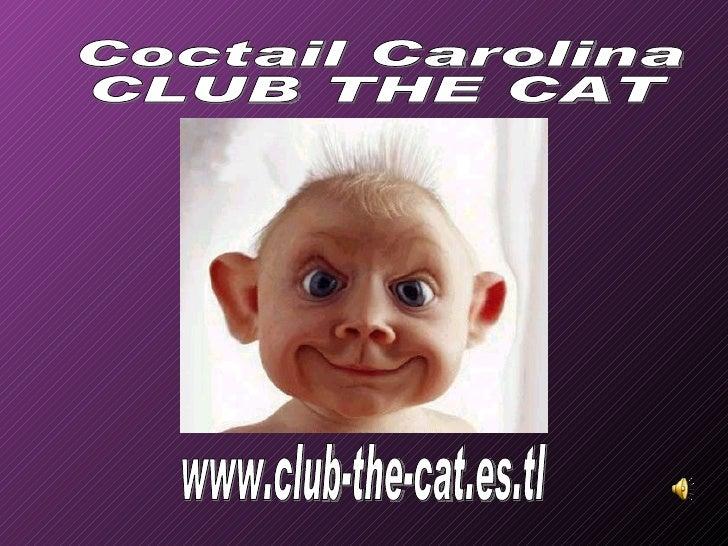 www.club-the-cat.es.tl Coctail Carolina CLUB THE CAT