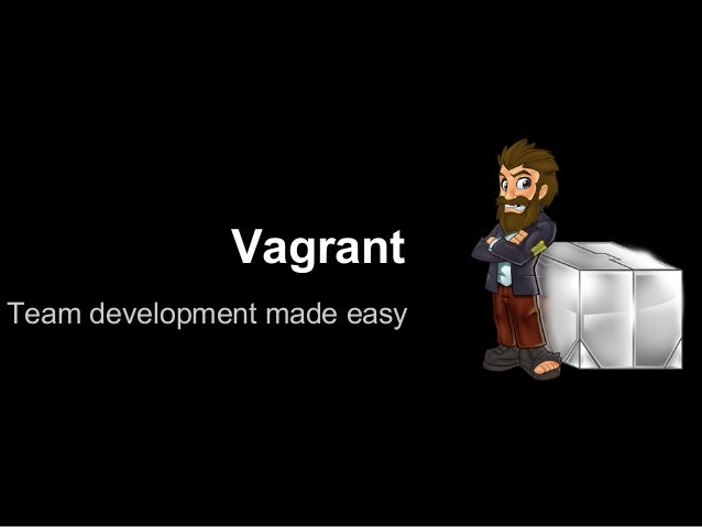 VagrantTeam development made easy