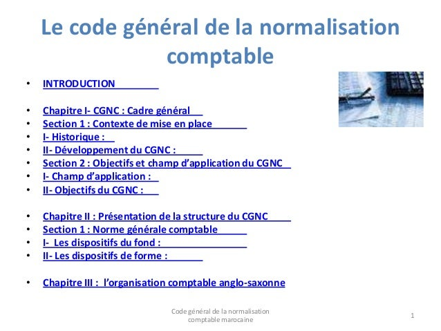 Le code général de la normalisation comptable •  INTRODUCTION  • • • • • • •  Chapitre I- CGNC : Cadre général Section 1 :...