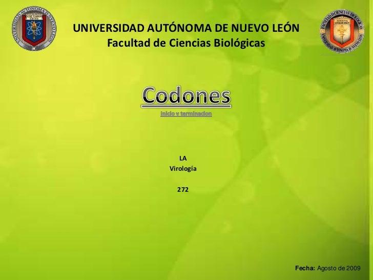 UNIVERSIDAD AUTÓNOMA DE NUEVO LEÓNFacultad de Ciencias Biológicas<br />Codones<br />Inicio y terminacion<br />LA<br />Viro...