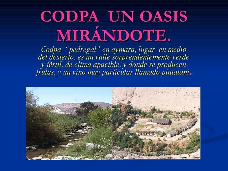"""CODPA UN OASIS   MIRÁNDOTE.   Codpa """" pedregal"""" en aymara, lugar en medio  del desierto, es un valle sorprendentemente ver..."""