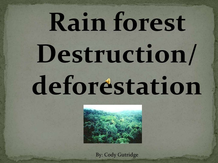 Rain forestDestruction/deforestation    By: Cody Gutridge