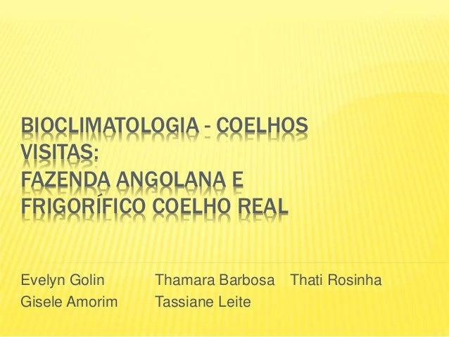 BIOCLIMATOLOGIA - COELHOS VISITAS: FAZENDA ANGOLANA E FRIGORÍFICO COELHO REAL Evelyn Golin Thamara Barbosa Thati Rosinha G...