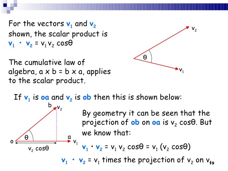 Scalar vs vector
