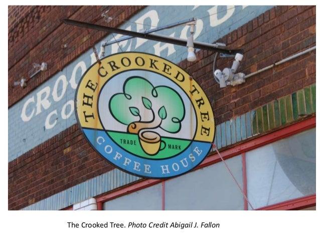 The Crooked Tree. Photo Credit Abigail J. Fallon