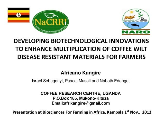 DEVELOPING BIOTECHNOLOGICAL INNOVATIONS TO ENHANCE MULTIPLICATION OF COFFEE WILT DISEASE RESISTANT MATERIALS FOR FARMERS A...