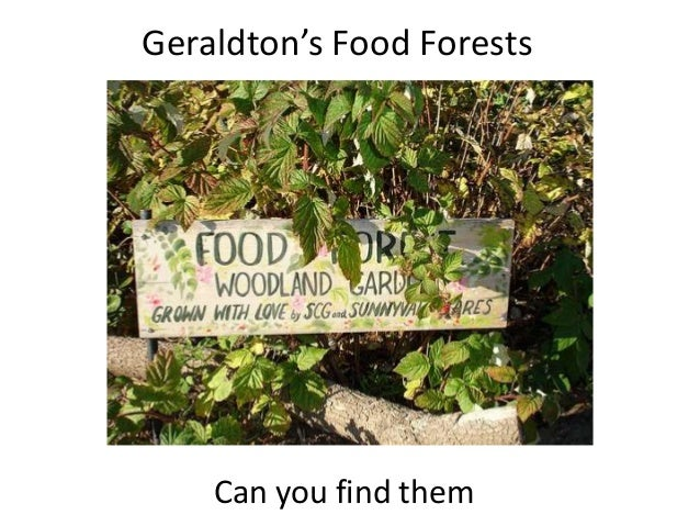 Geraldton's Food Forests Can you find them