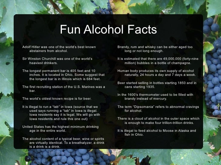 Alcohol Industry Facts Fun Facts And Other Information