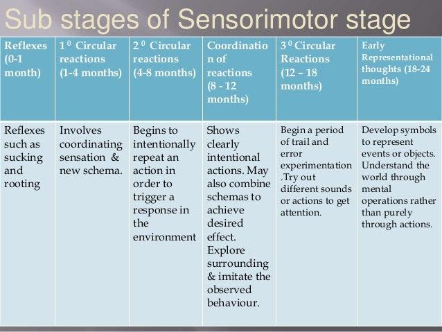 piaget s sensorimotor stage