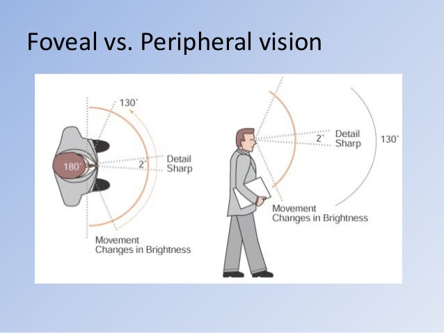 a report on a foveal acuity mini lab