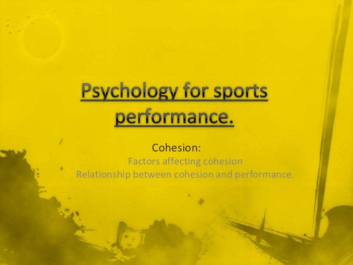 Cohesion:            Factors affecting cohesionRelationship between cohesion and performance.