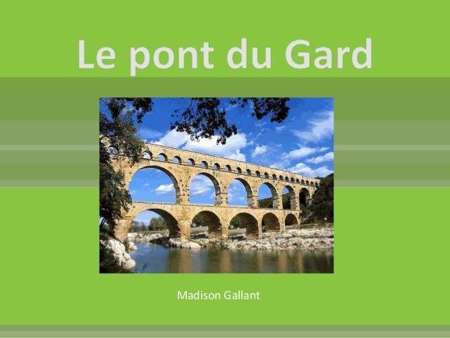 Madison Gallant