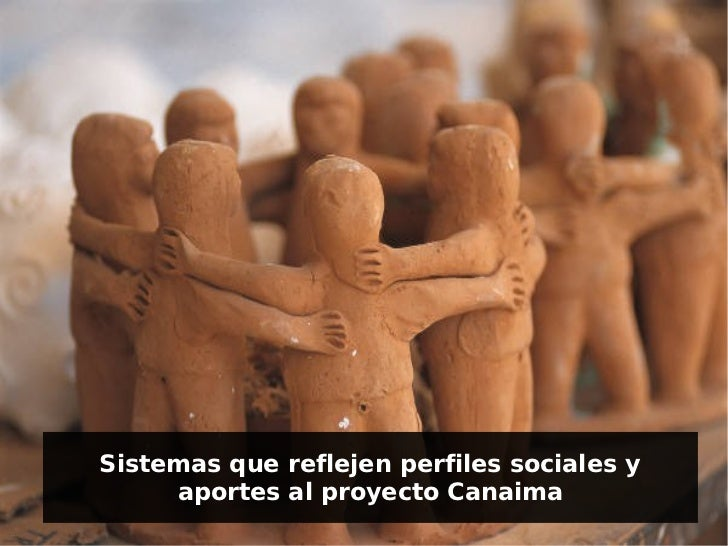 Sistemas que reflejen perfiles sociales y     aportes al proyecto Canaima