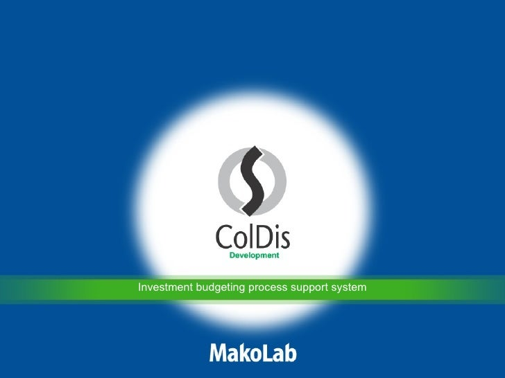 Investment budgeting process support system