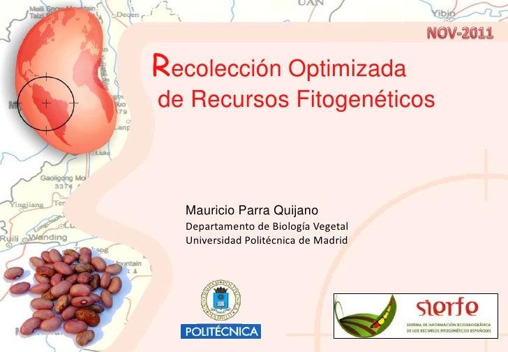 Recolección Optimizadade Recursos Fitogenéticos  Mauricio Parra Quijano  Departamento de Biología Vegetal  Universidad Pol...