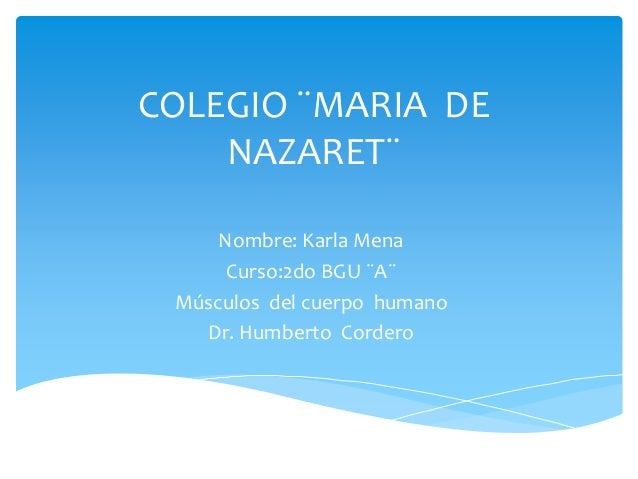 COLEGIO ¨MARIA DE NAZARET¨ Nombre: Karla Mena Curso:2do BGU ¨A¨ Músculos del cuerpo humano Dr. Humberto Cordero