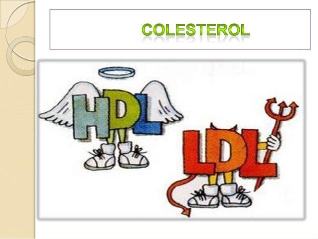 O colesterol é uma das gorduras que circulam no nosso organismo. A outra é os triglicérides, eles são utilizados como ener...