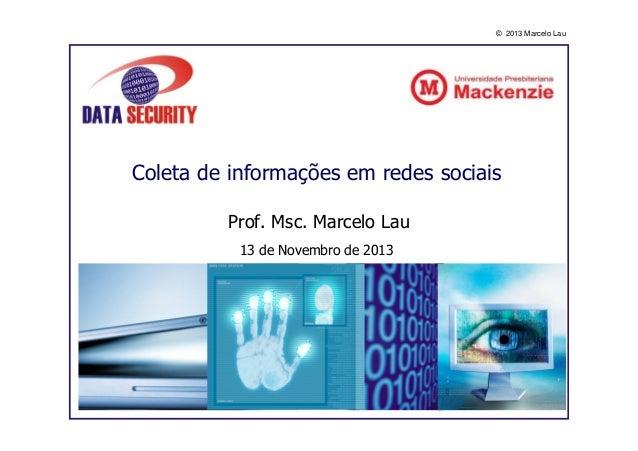 © 2013 Marcelo Lau  Coleta de informações em redes sociais Prof. Msc. Marcelo Lau 13 de Novembro de 2013