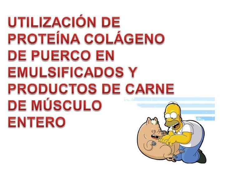 Colágeno de Puerco