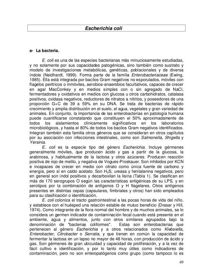 Escherichia colia- La bacteria.       E. coli es una de las especies bacterianas más minuciosamente estudiadas,y no solame...