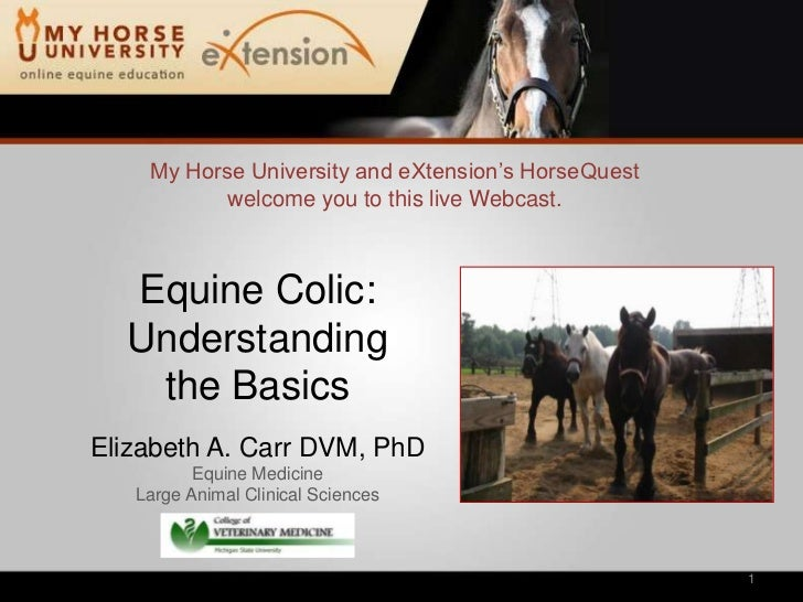 Colic: Diagnosis, Treatment and Prevention (Carr)