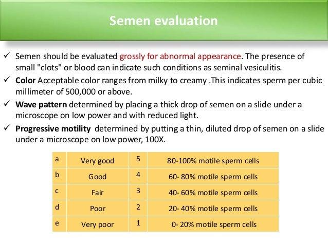 massage vagina single apps im test
