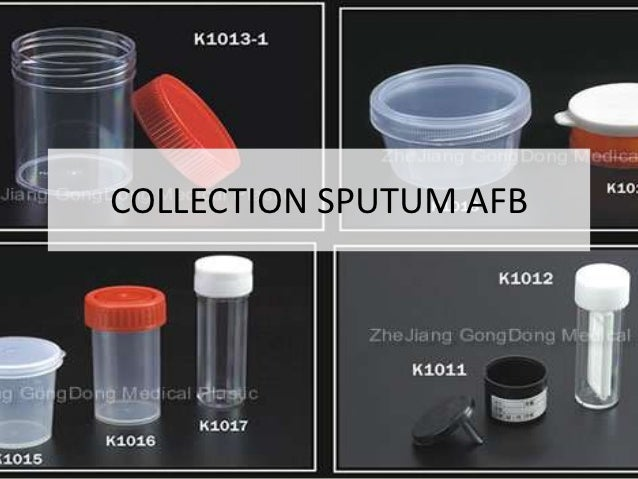 COLLECTION SPUTUM AFB
