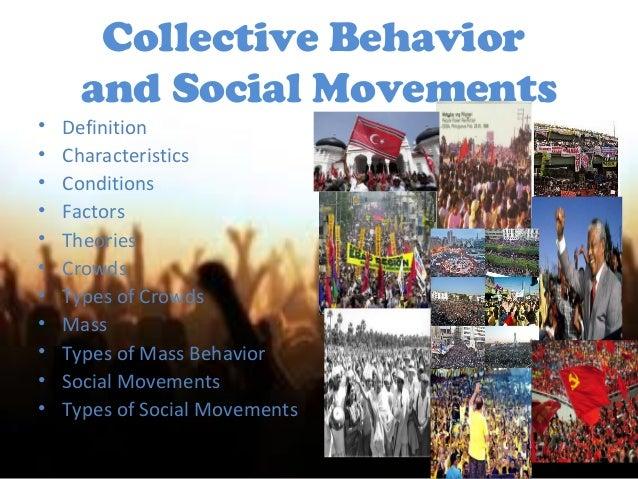 Behavior Basics: Social Scenarios