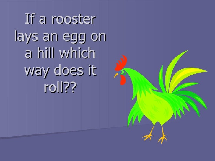 If a rooster lays an egg on a hill which way does it roll??