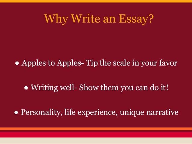 essay my future life