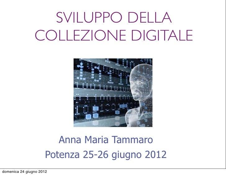 SVILUPPO DELLA                COLLEZIONE DIGITALE                        Anna Maria Tammaro                     Potenza 25...