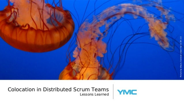 Collocation in Distributed Scrum Teams - Lessons Learned