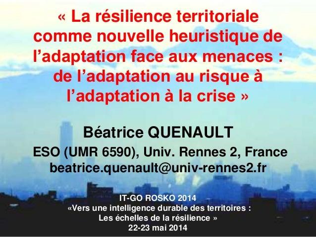« La résilience territoriale comme nouvelle heuristique de l'adaptation face aux menaces : de l'adaptation au risque à l'a...