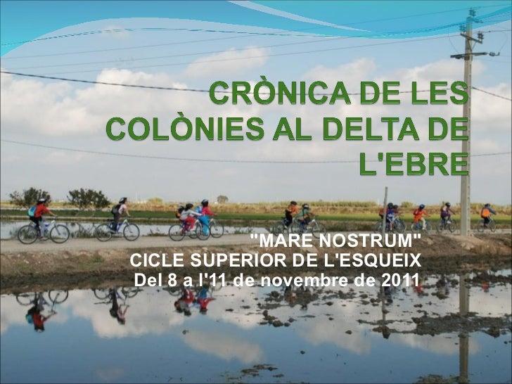 """""""MARE NOSTRUM"""" CICLE SUPERIOR DE L'ESQUEIX Del 8 a l'11 de novembre de 2011"""
