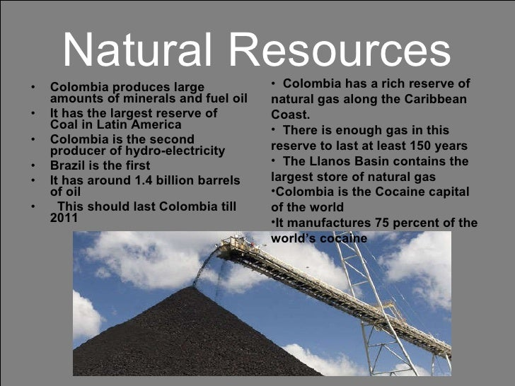 What Are Paraguay S Natural Resources