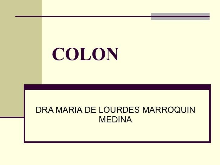 COLON DRA MARIA DE LOURDES MARROQUIN MEDINA