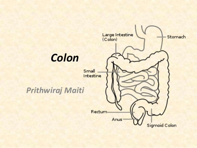 Important disorders of colon