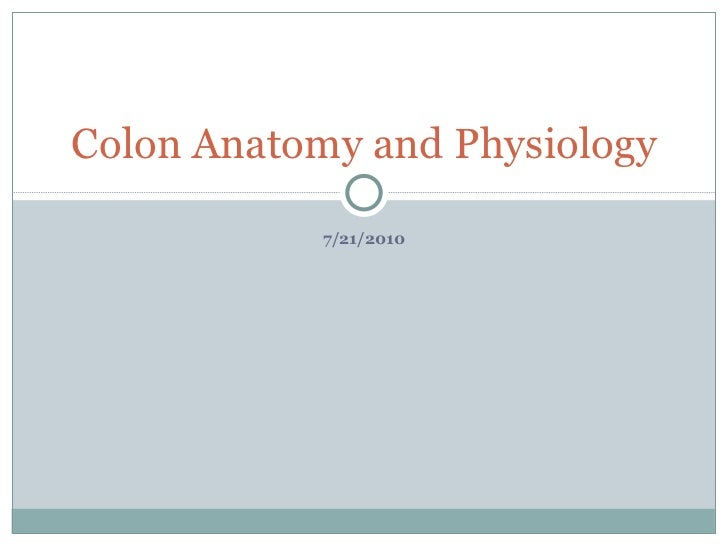 Colon Anatomy and Physiology            7/21/2010
