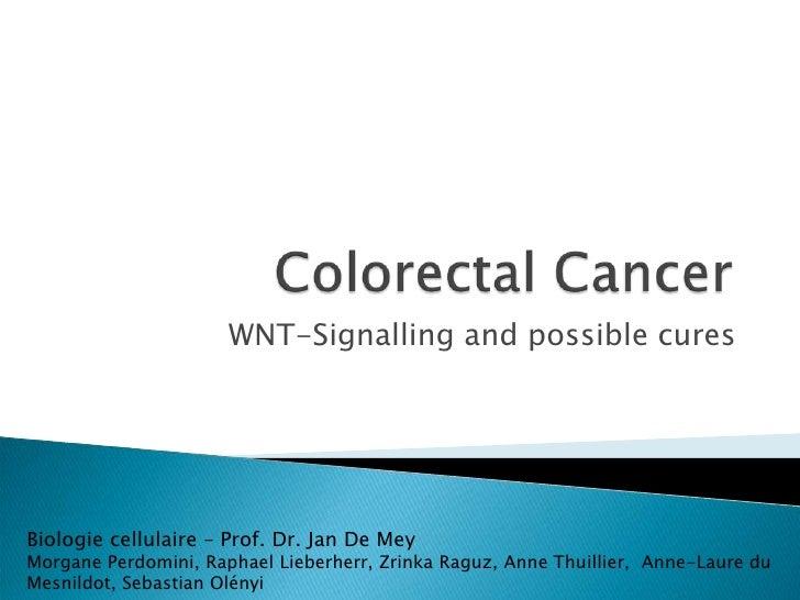 WNT-Signalling and possible cures     Biologie cellulaire – Prof. Dr. Jan De Mey Morgane Perdomini, Raphael Lieberherr, Zr...