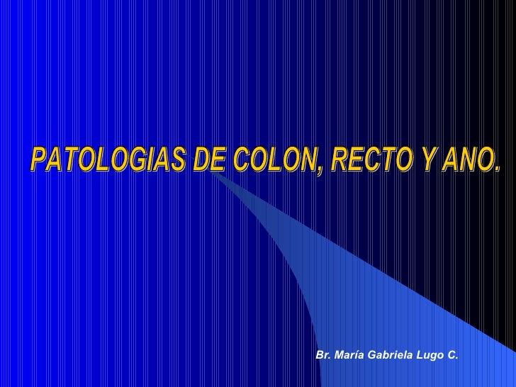 Br. María Gabriela Lugo C. PATOLOGIAS DE COLON, RECTO Y ANO.