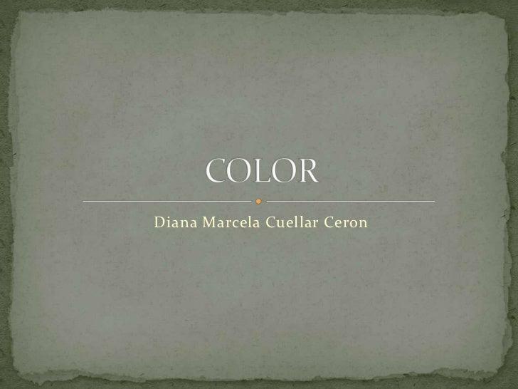 Diana Marcela Cuellar Ceron<br />COLOR<br />