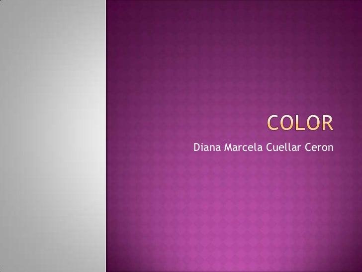 COLOR<br />Diana Marcela Cuellar Ceron<br />