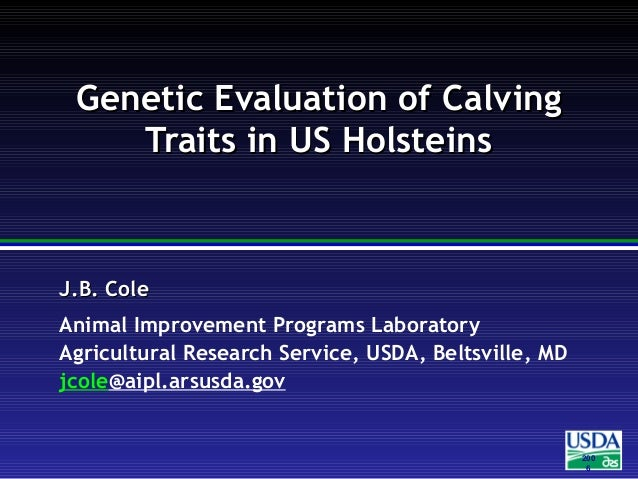 Genetic Evaluation of Calving Traits in US Holsteins