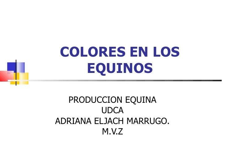 COLORES EN LOS EQUINOS PRODUCCION EQUINA UDCA ADRIANA ELJACH MARRUGO. M.V.Z