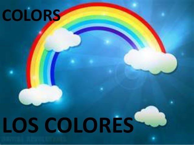 Colores y figuras / colors and shapes