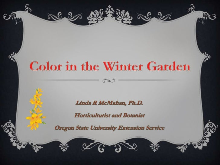 COLOR IN THE WINTER GARDEN  Expected & Familiar  Bracket the Season  Stars of Winter Bloom  Small Pleasures  Lesson from C...