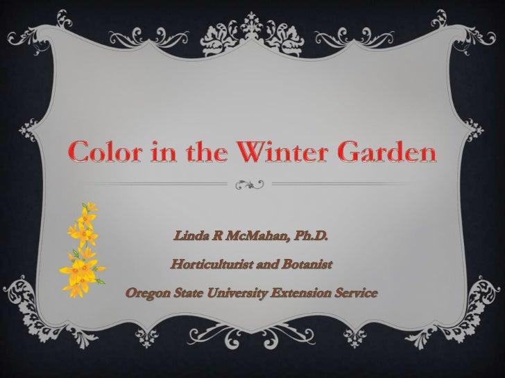 Color in the winter garden