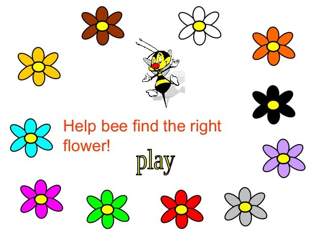 Help bee find the right flower!