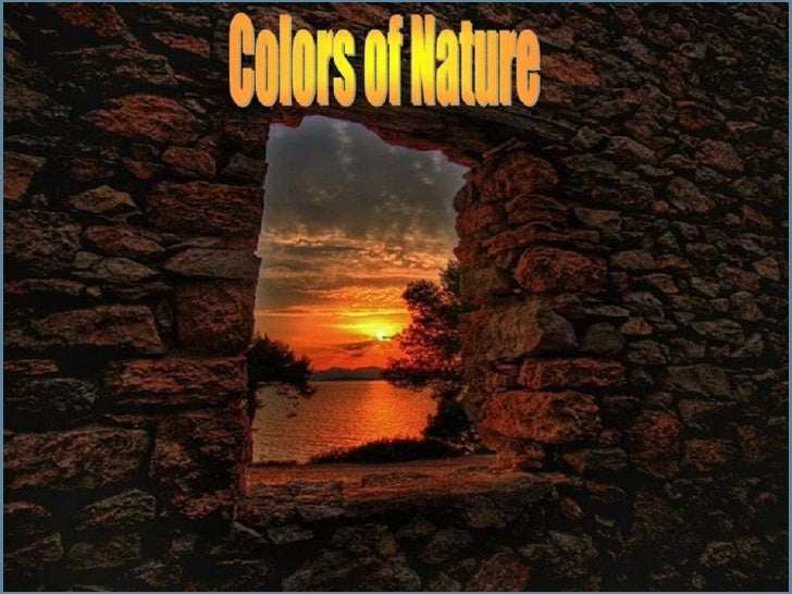 Colors of nature  (catherine).